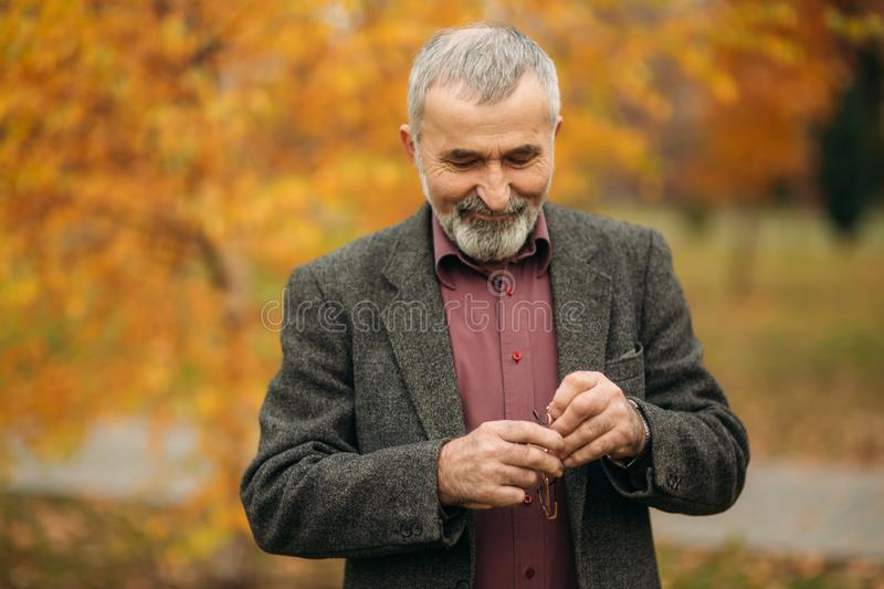 Grandpa with a big well-groomed beard wearing a glasses stock photos