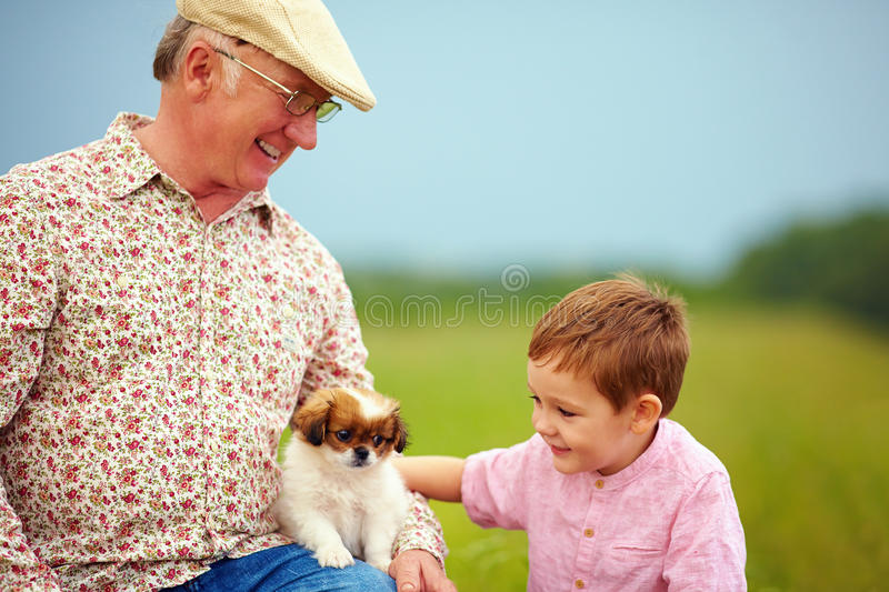 Grandpa and grandson playing with little puppy, summer outdoors. Grandpa and grandson playing with little puppy, summer royalty free stock images