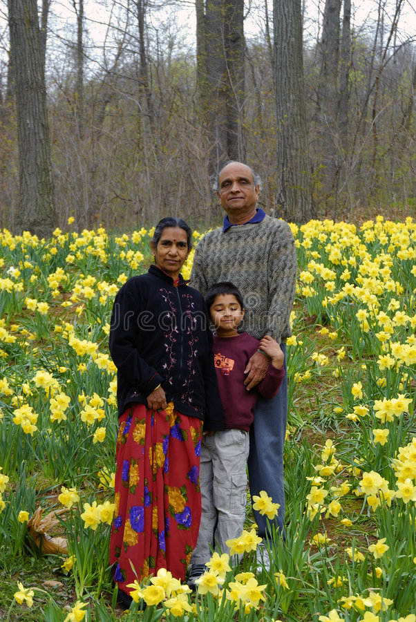 GrandParents. An Indian Kid with grandparents in a field of daffoldils royalty free stock images