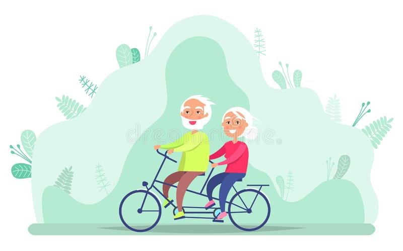 Grandparents on Bicycle, Riding Senior Vector vector illustration