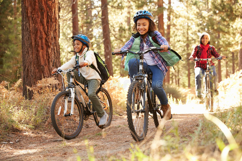 Grandparents With Children Cycling Through Fall Woodland royalty free stock image