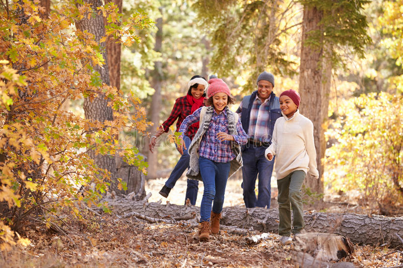 Grandparents With Children Walking Through Fall Woodland royalty free stock photo