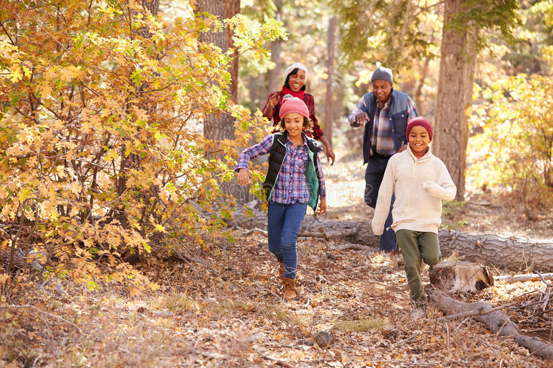 Grandparents With Children Walking Through Fall Woodland royalty free stock photos