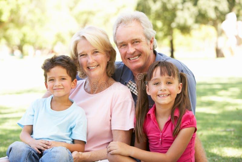 Grandparents e netos que apreciam o dia imagem de stock royalty free