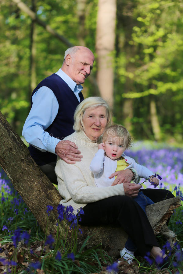 Grandparents with grandchild hiking in the forest stock images