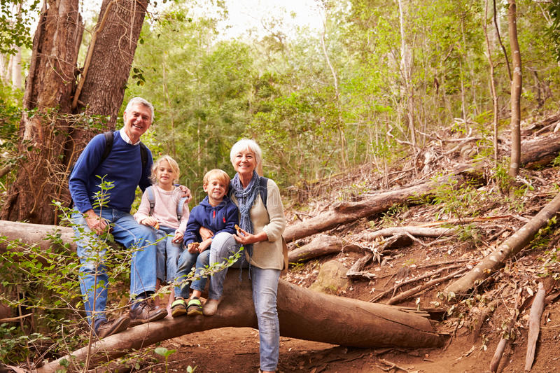 Grandparents and grandchildren eating in a forest, portrait stock image