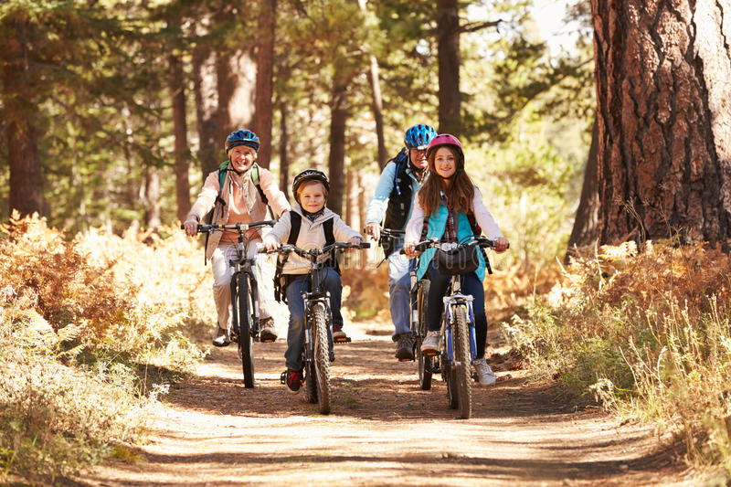Grandparents and kids cycling on forest trail, California stock photo
