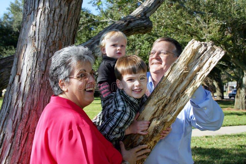 Grandparents que jogam com netos imagens de stock