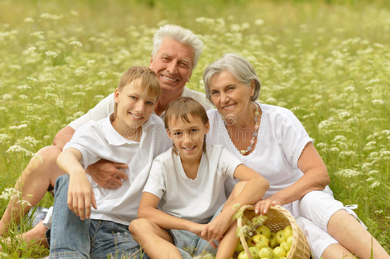 Grandparents with two boys on grass stock photos