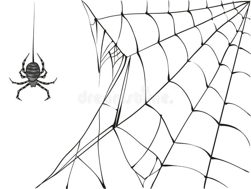 Grands araignée et Web noirs sur le fond blanc illustration stock
