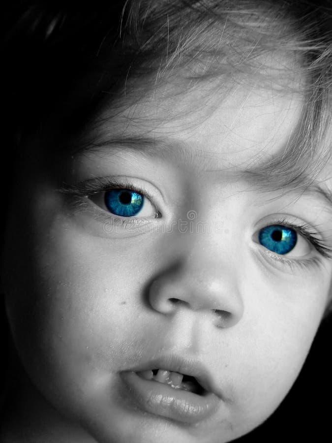 Grands bleus photos stock