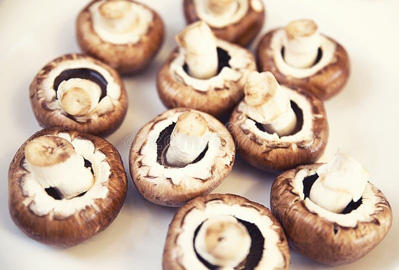 Grands champignons de paris bruns, champignons saprotrophy sur un fond blanc, faisant cuire images stock