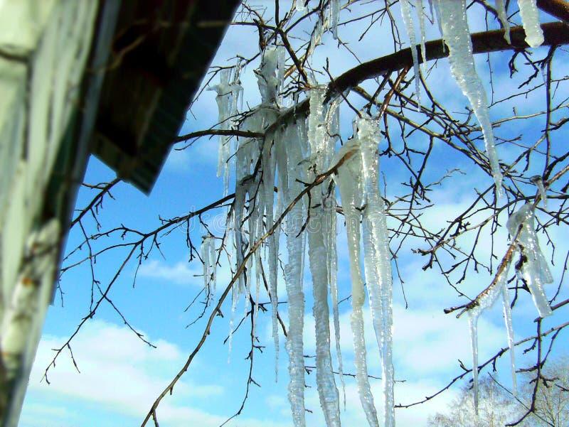 Grands glaçons de dégel photographie stock libre de droits