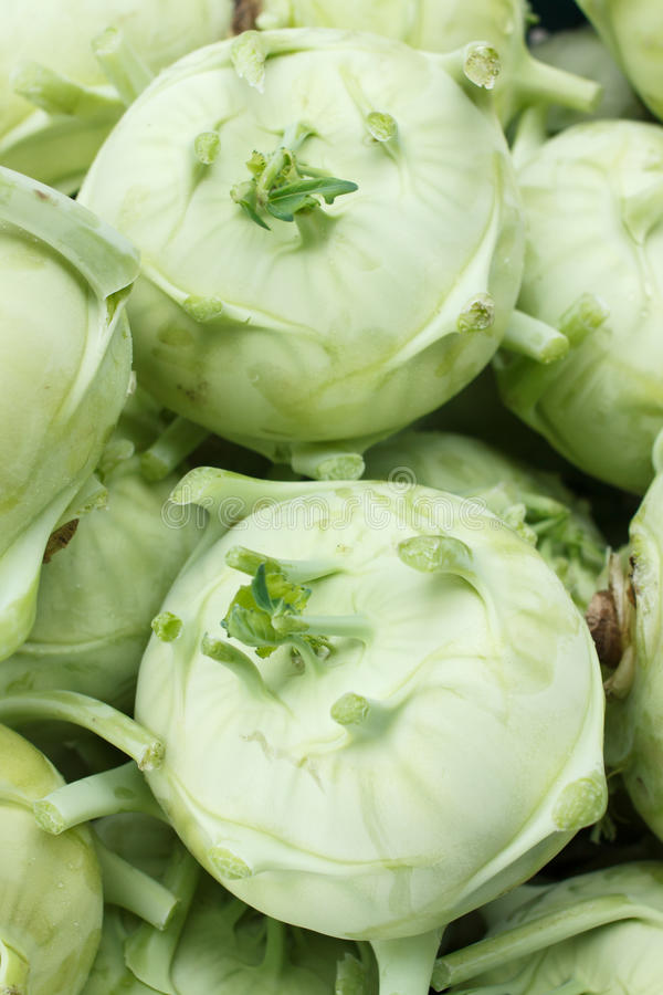 Grands kohlrabis ou navets photographie stock