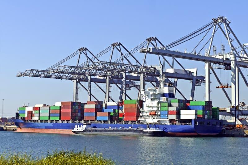 Grands navires porte-conteneurs avec des grues photo libre de droits
