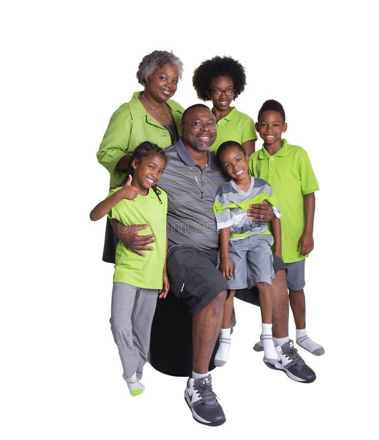 Grands-parents et leurs 4 petits-enfants photo libre de droits