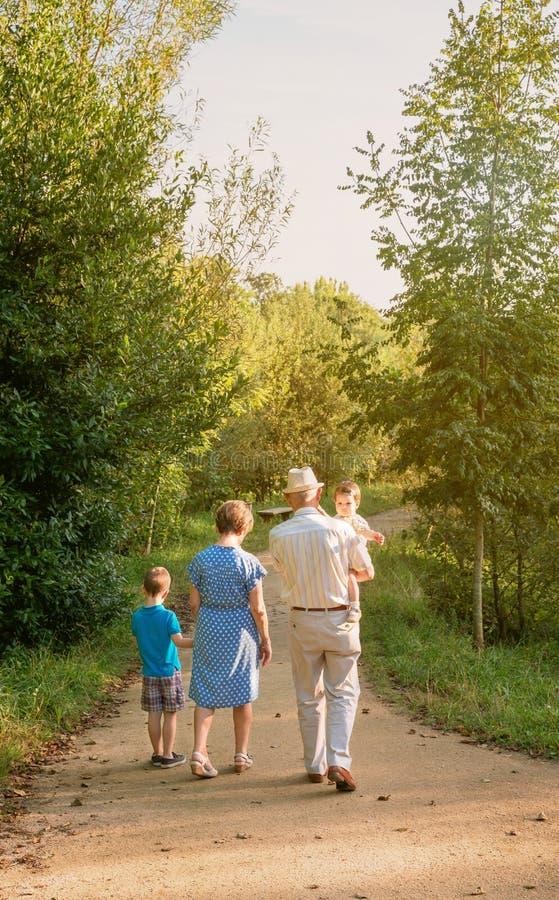 Grands-parents et petits-enfants marchant dehors image stock