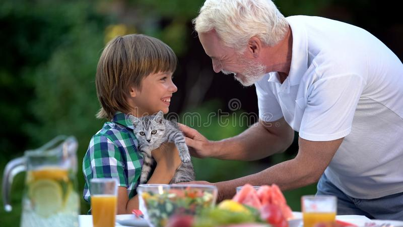 Grandson getting cute kitten on birthday from grandfather, surprise present royalty free stock photos