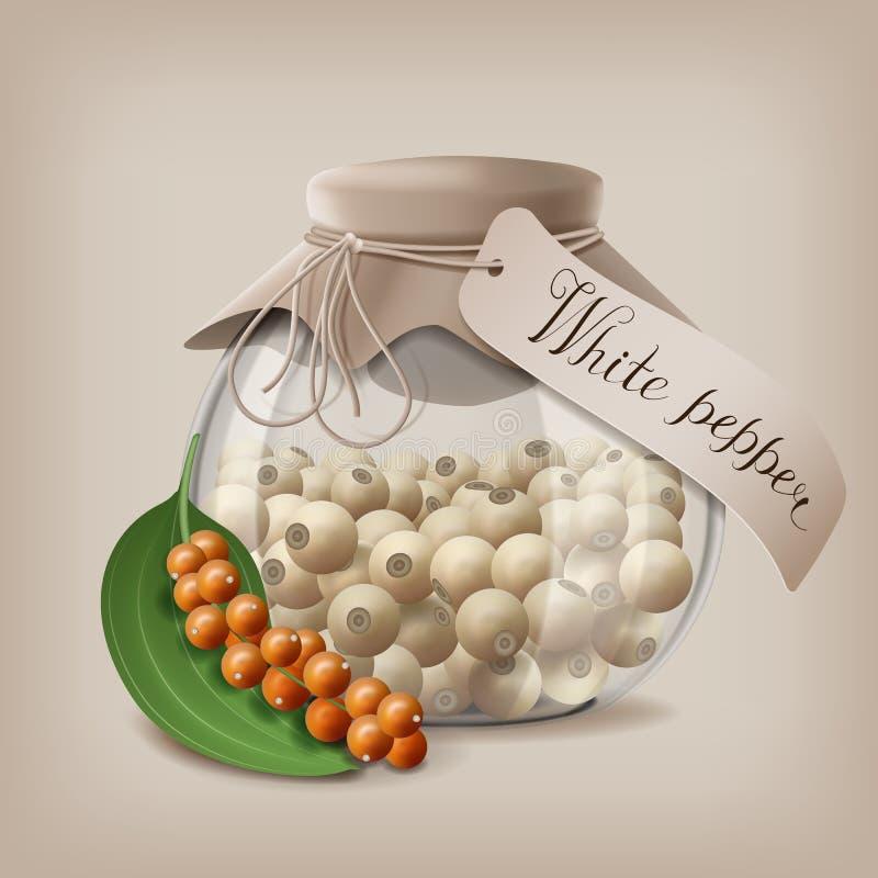 Granelli di pepe bianchi in un barattolo di vetro con un ramo del pepe della frutta Illustrazione di vettore royalty illustrazione gratis