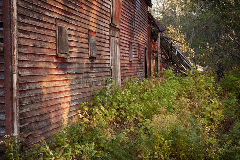 Granero abandonado viejo en el bosque fotos de archivo libres de regalías