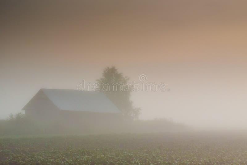 Granero en niebla pesada fotos de archivo