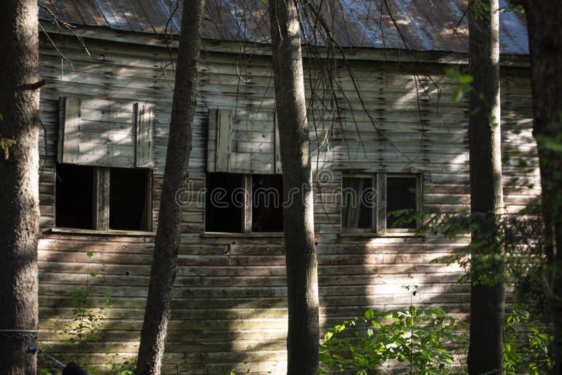 Granero viejo en los árboles fotografía de archivo libre de regalías
