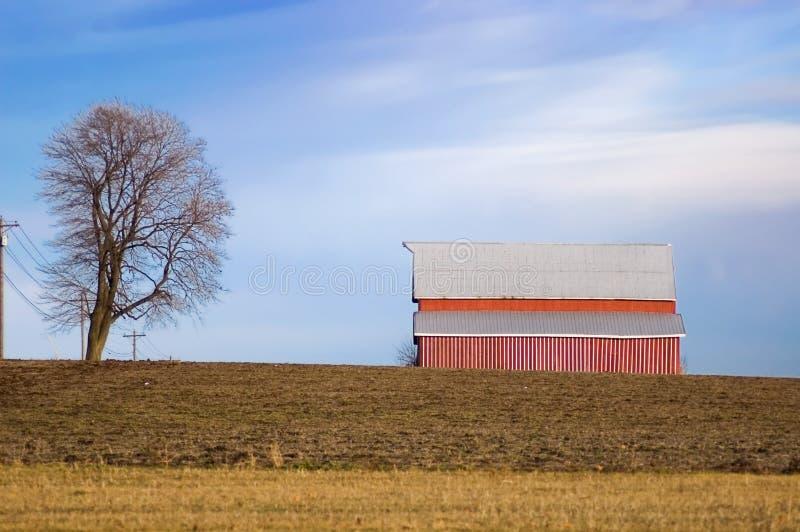Granero y árbol rojos en tierras de labrantío del invierno fotografía de archivo