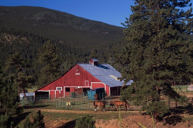 Granero y caballos rojos del país de Colorado fotografía de archivo libre de regalías