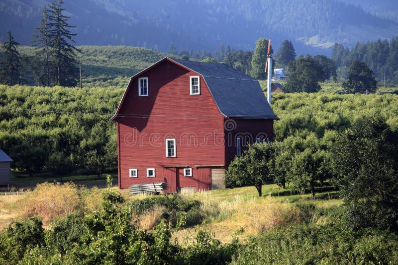 Granero y huertas rojos. fotografía de archivo libre de regalías