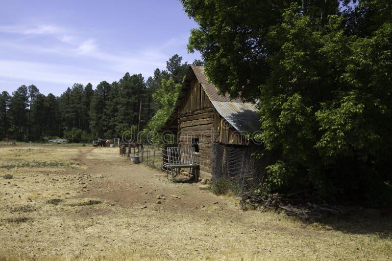 Granero y vertiente pioneros del oeste viejos rústicos de caballo fotografía de archivo libre de regalías