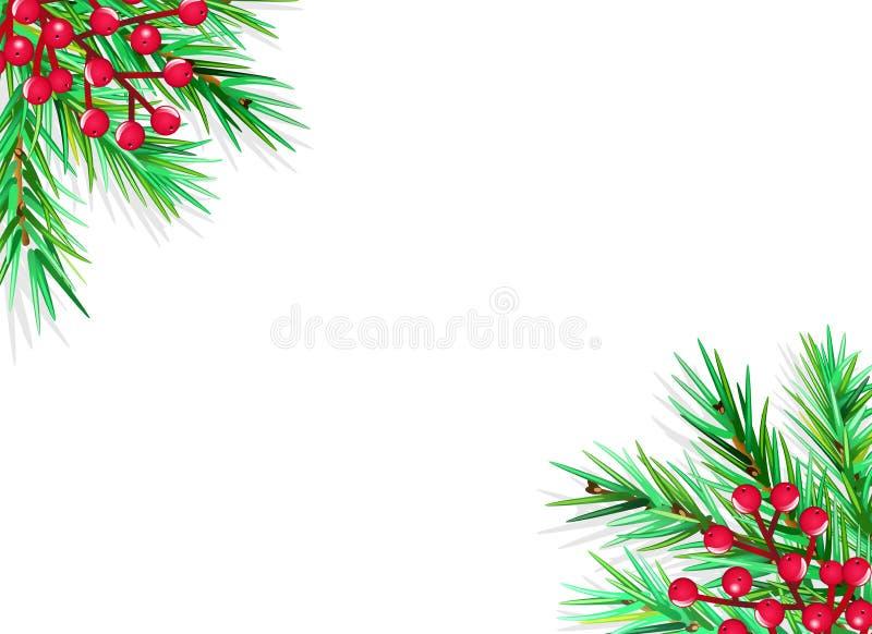 GRANFILIAL OCH HOLLY BERRY GARNERINGRAM Baner för julhälsningkort vektor illustrationer