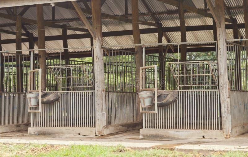 Grange de cheval vide photographie stock libre de droits