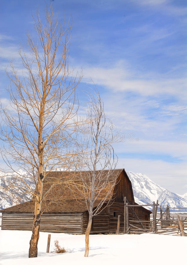 Grange de Moulton en stationnement national de Teton photo stock