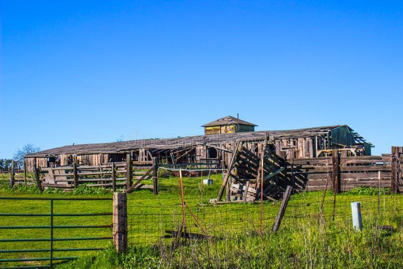 Grange de vintage et clôture en bois avec la rampe de bétail le délabrement image libre de droits