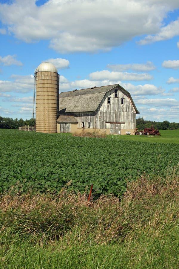 Grange et silo attrayants dans le Wisconsin photos libres de droits