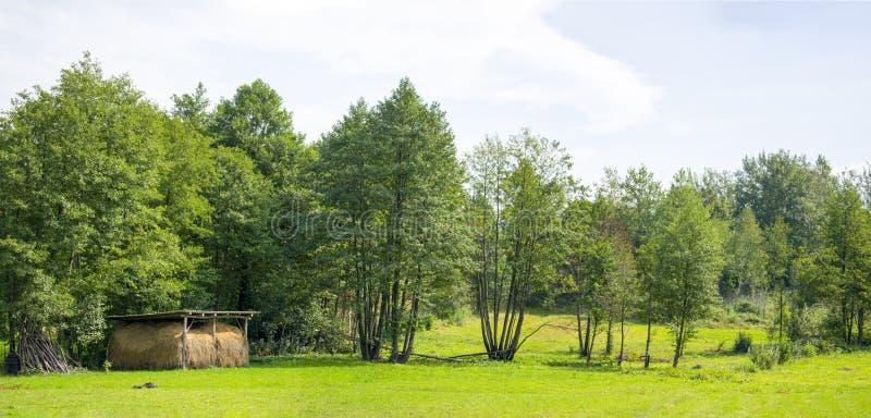 Grange panoramique de foin dans le domaine vert photo stock