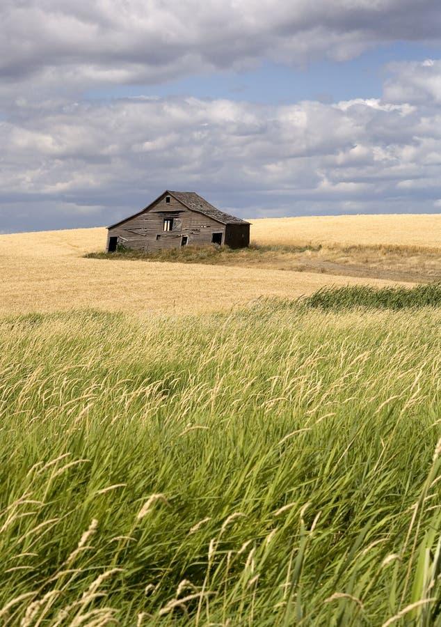 Grange rustique dans les terres cultivables. photo stock