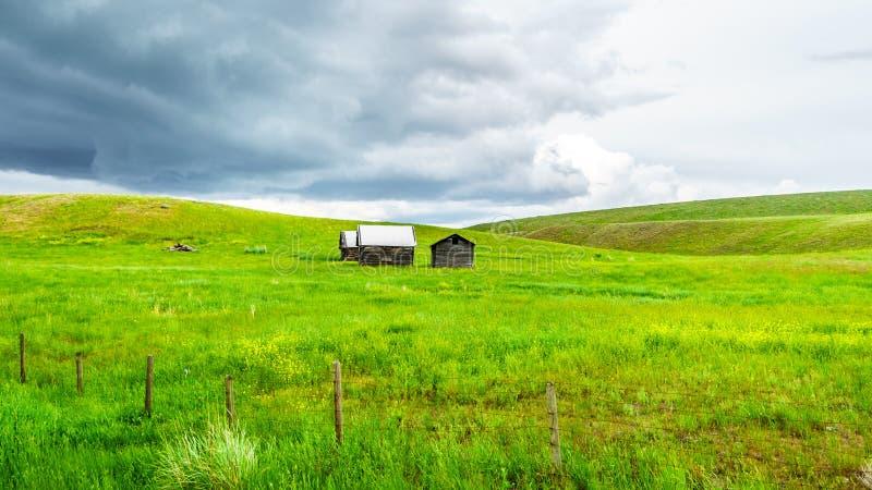 Granges dans les terres d'herbe de Nicola Valley en Colombie-Britannique, Canada image libre de droits