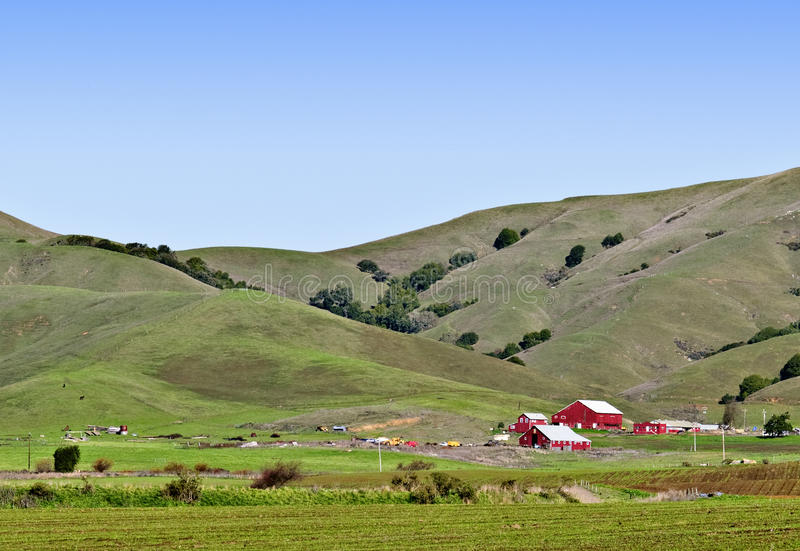 Granges rouges, Rolling Hills verte, la Californie image stock