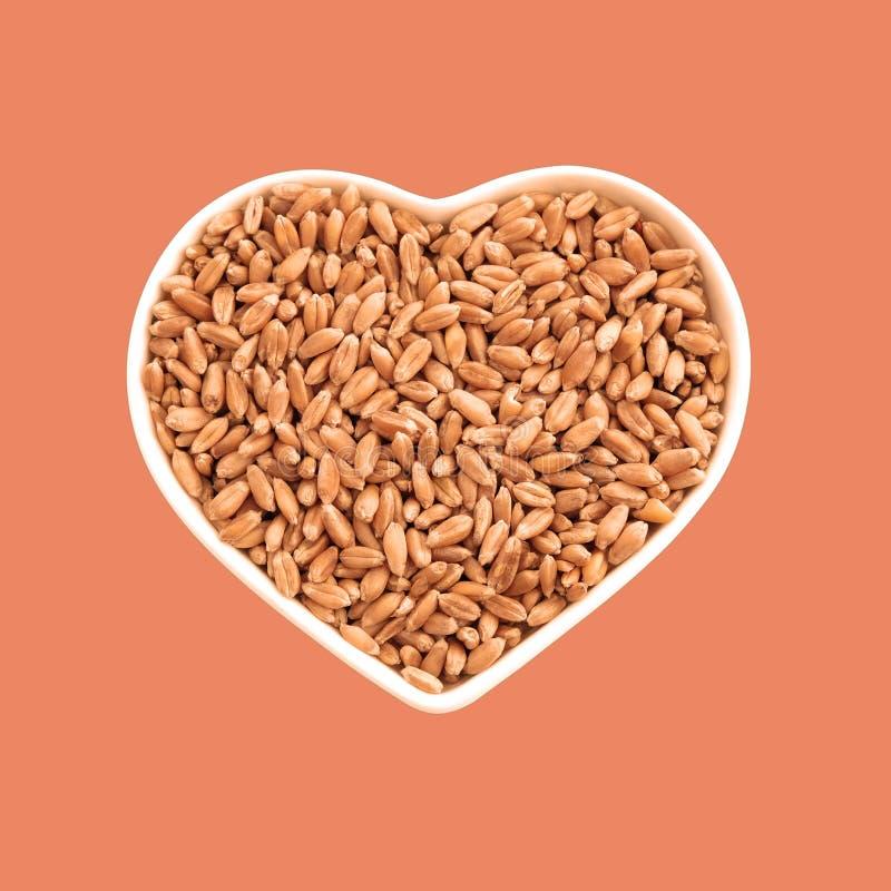 Grani del grano in un piatto sotto forma di un cuore Alimento favorito Agricoltura ed amore In isolamento Fondo beige ed arancio fotografie stock libere da diritti