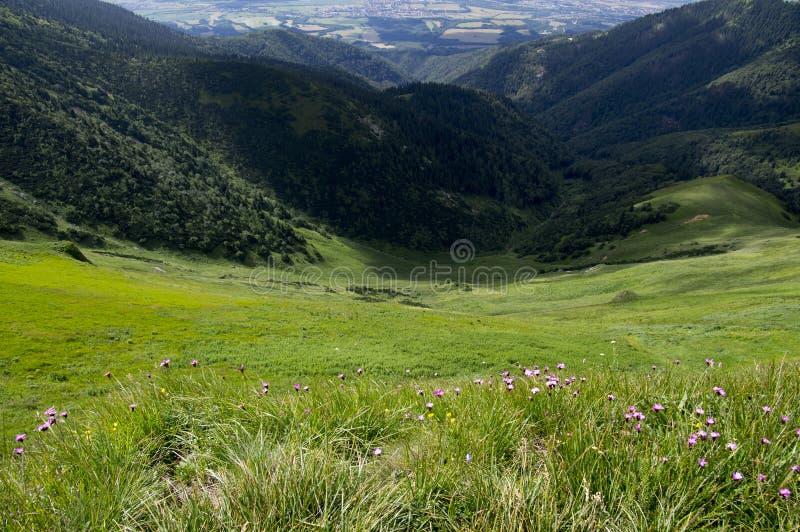Grani podwyżka, góra Maly Krivan Chleb, Lesser Fatra, Sistani zdjęcie stock