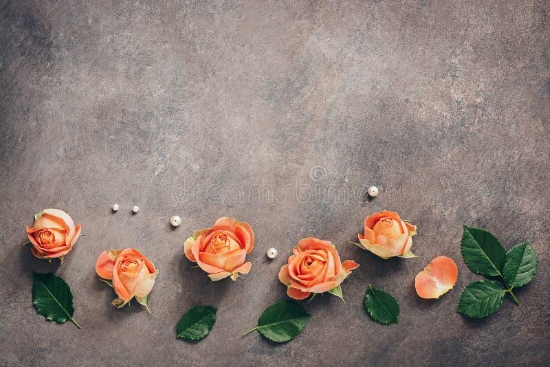 Granica koralowe róż głowy dekorować z perłami na ciemnym textured tle Piękny kwiatu skład, kartka z pozdrowieniami fotografia stock