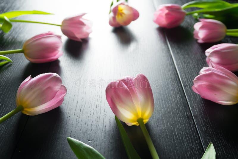 Granica od jaskrawych różowych tulipanów kwitnie na czarnym drewnianym backgroun zdjęcia royalty free