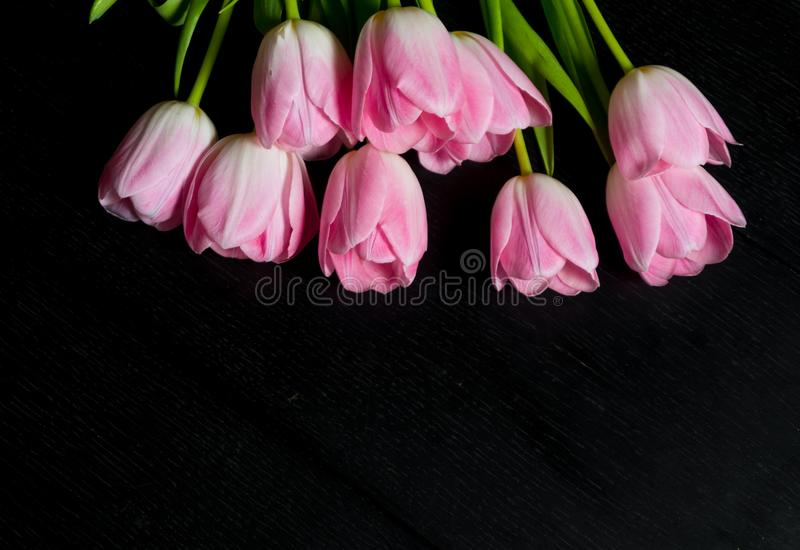 Granica od jaskrawych różowych tulipanów kwitnie na czarnym drewnianym tle fotografia royalty free