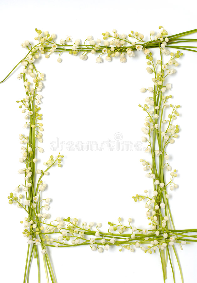 granice backgr kwiaty lily papieru rama dale występować samodzielnie zdjęcie stock