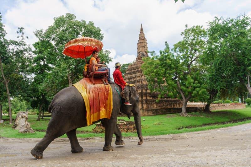 Graniczącego słonia zwiedzający stary miasto popularny z turystami zdjęcie royalty free
