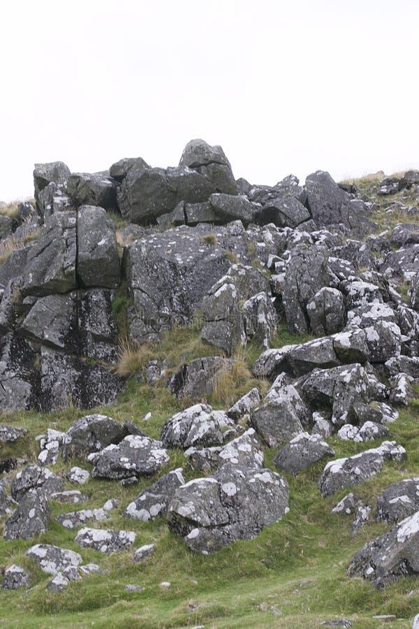 Granietdagzomende aardlaag op het Nationale Park van Dartmoor royalty-vrije stock foto's