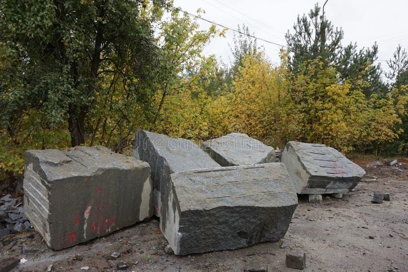 Granit stenar att ligga på jordningen i höstskogen arkivbild