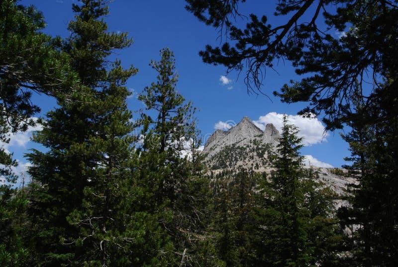 Granit von Yosemite lizenzfreie stockbilder