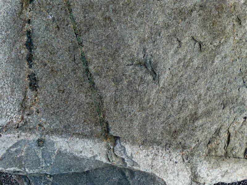 Granite Flat Rock Face. Closeup royalty free stock photography